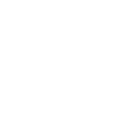 Rhino Club Card